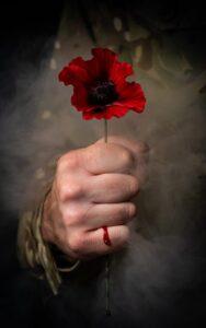 hold poppy 4